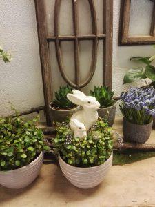 Osterangebote bei Blumen Brehmer in Immekeppel